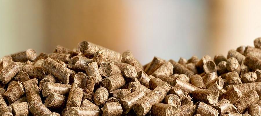 Les avantages des granules de bois pour le chauffage